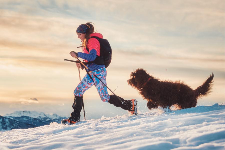 consejos-perros-excursion